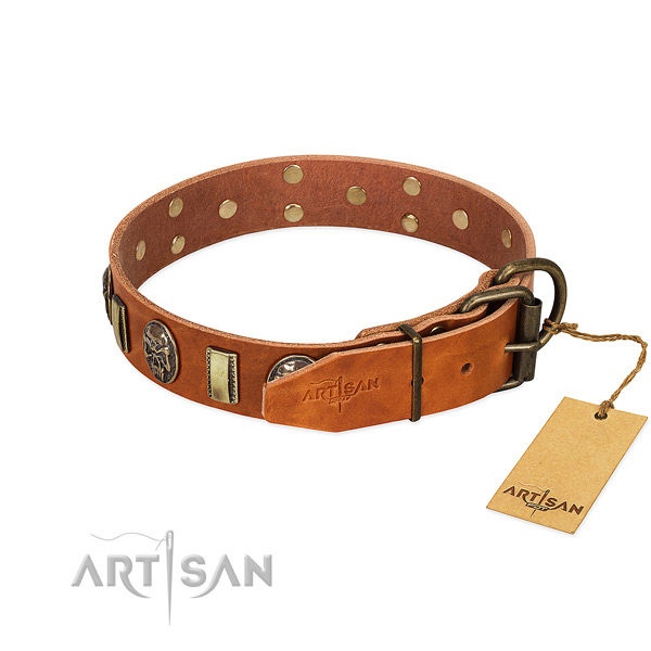 Full grain genuine leather dog collar with durable fittings and studs