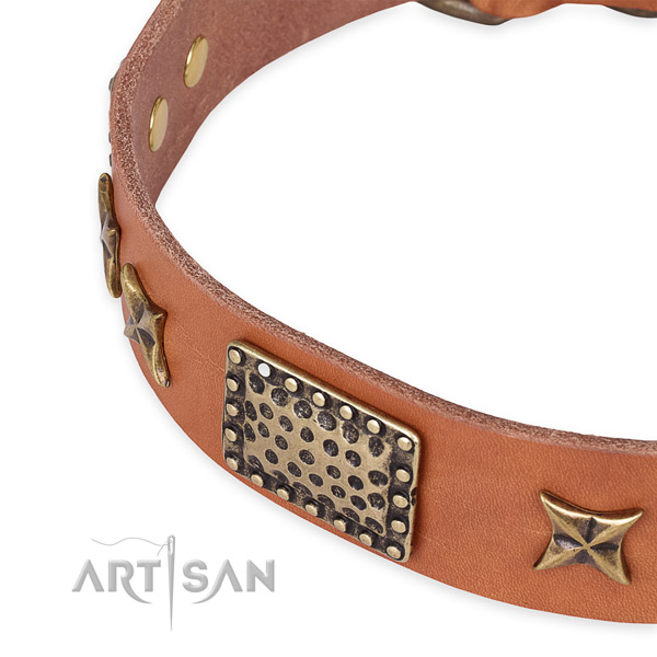 Genuine leather collar with durable D-ring for your handsome pet