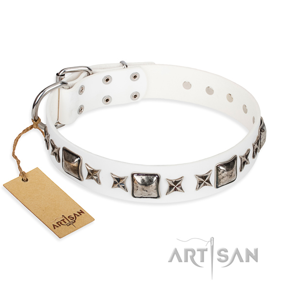 Full grain natural leather dog collar made of reliable material with corrosion resistant D-ring