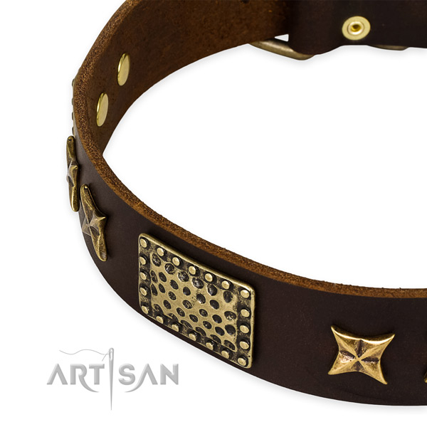 Full grain genuine leather collar with rust resistant traditional buckle for your beautiful pet