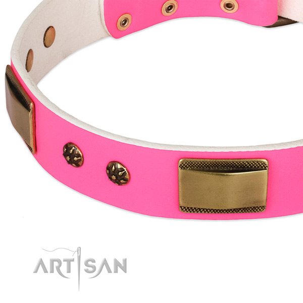 Rust-proof hardware on leather dog collar for your doggie