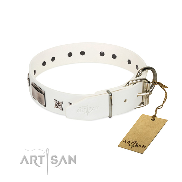 Embellished collar of leather for your stylish canine