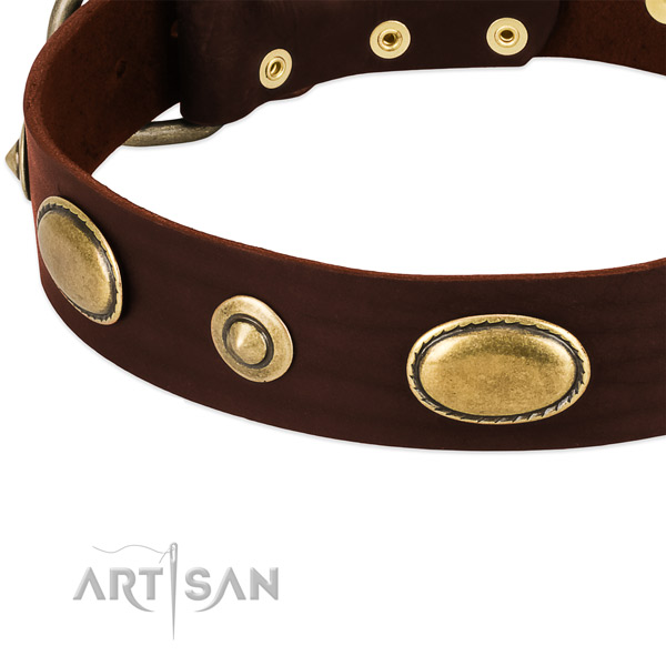 Durable decorations on natural leather dog collar for your dog