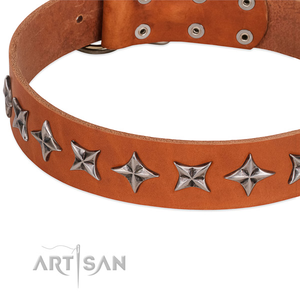 Everyday walking decorated dog collar of durable genuine leather