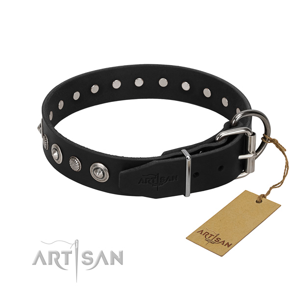 Strong full grain natural leather dog collar with impressive adornments