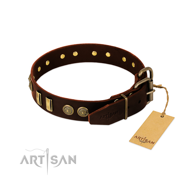 Corrosion resistant decorations on natural leather dog collar for your doggie