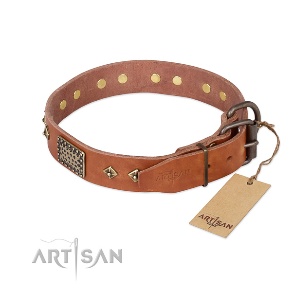 Natural leather dog collar with rust resistant hardware and embellishments