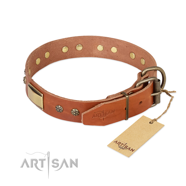 Natural genuine leather dog collar with corrosion proof fittings and embellishments
