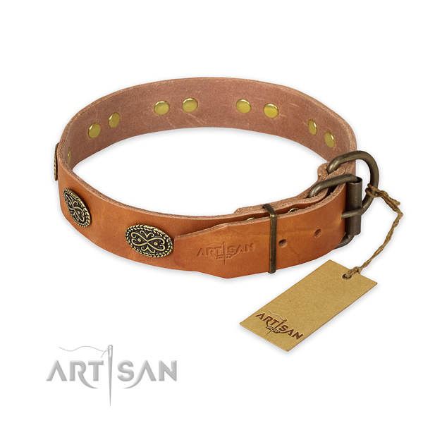 Strong buckle on full grain genuine leather collar for basic training your pet