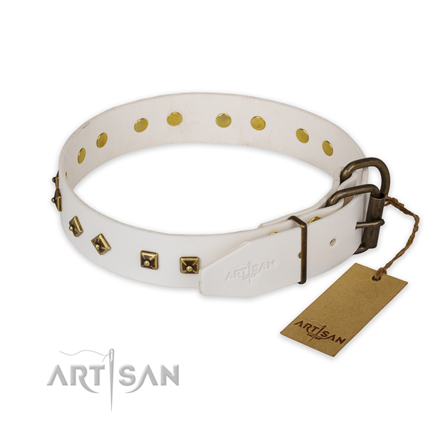 Strong hardware on genuine leather collar for basic training your canine