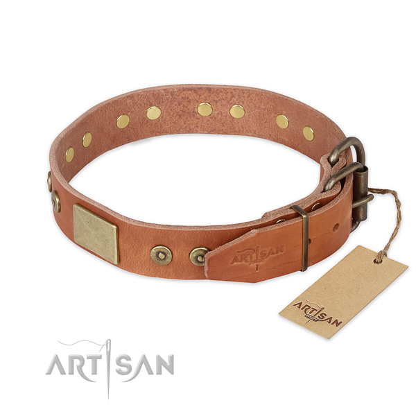 Strong fittings on full grain leather collar for fancy walking your doggie