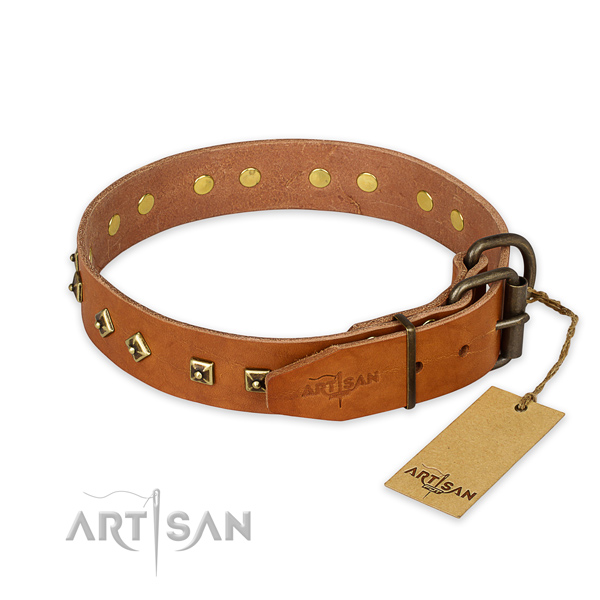 Durable fittings on natural leather collar for everyday walking your pet