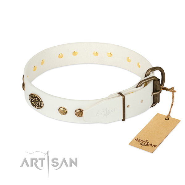 Rust resistant buckle on leather dog collar for your four-legged friend