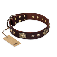 """Breath of Elegance"" FDT Artisan Decorated with Plates Brown Leather Boxer Collar"