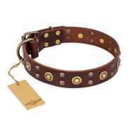 """Caprice of Fashion"" FDT Artisan Brown Leather Boxer Collar with Round Decorations"