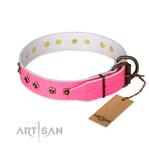 Durable D-ring on leather collar for everyday walking your dog
