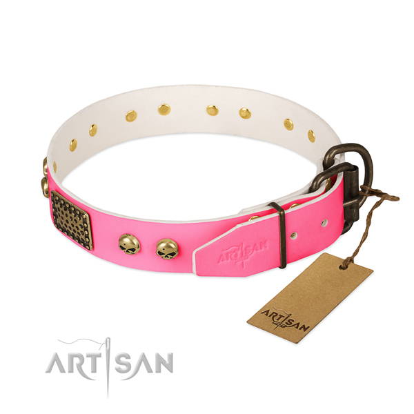 Strong studs on handy use dog collar