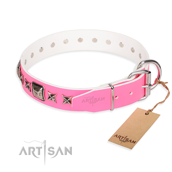 Strong decorated dog collar of full grain natural leather