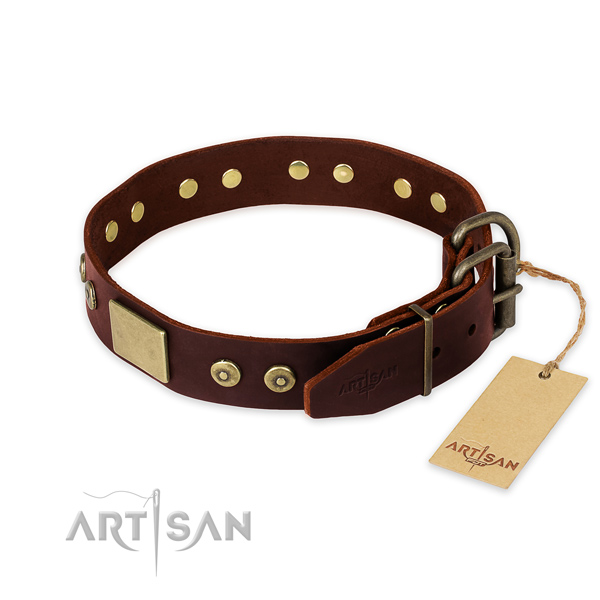 Strong fittings on basic training dog collar