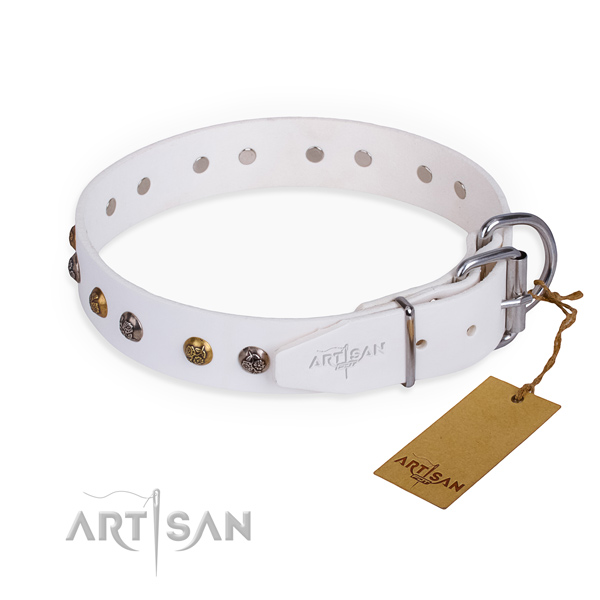 Full grain genuine leather dog collar with unusual rust resistant adornments