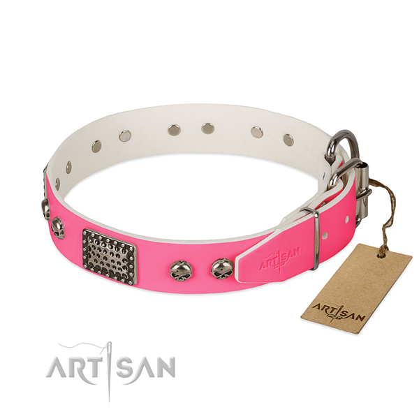 Corrosion resistant studs on comfy wearing dog collar