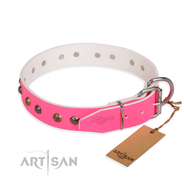 Natural leather dog collar with fashionable reliable adornments