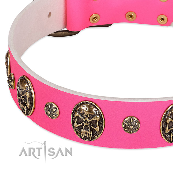 Perfect fit dog collar crafted for your attractive doggie