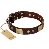 """Shining Armour"" FDT Artisan Brown Leather Boxer Collar with Decorations"