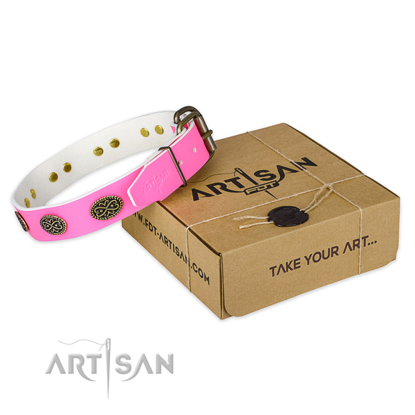 Durable fittings on dog collar for comfortable wearing