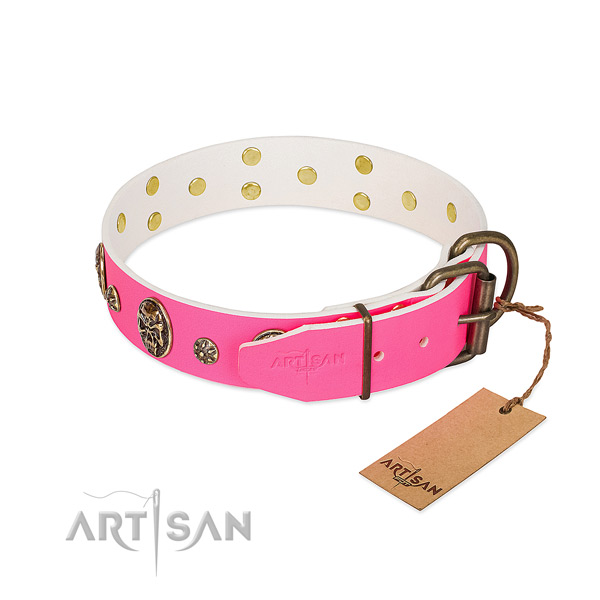 Durable traditional buckle on full grain leather collar for stylish walking your doggie