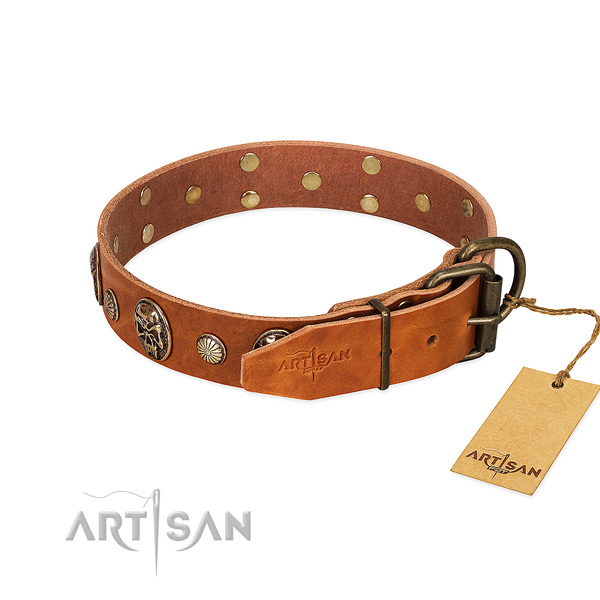 Corrosion proof D-ring on full grain leather collar for walking your doggie
