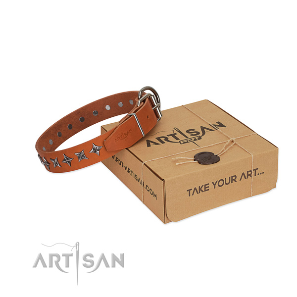 Stylish walking dog collar of finest quality full grain genuine leather with decorations