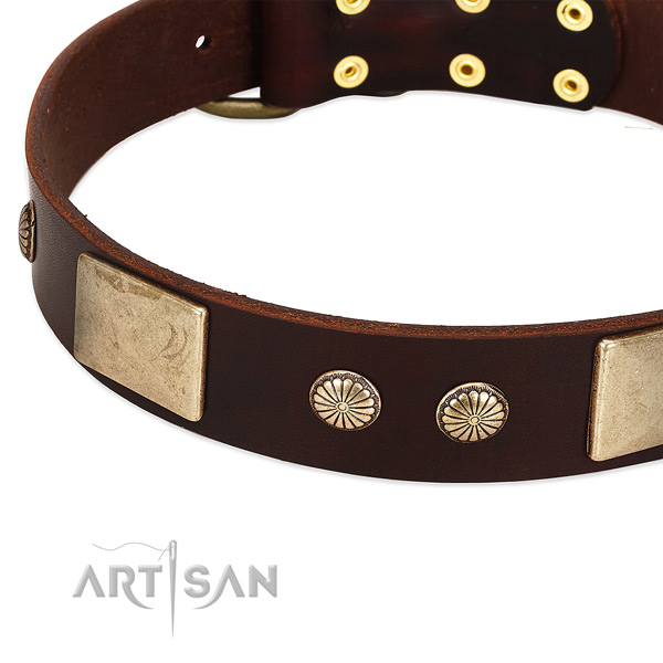 Corrosion proof fittings on full grain genuine leather dog collar for your canine
