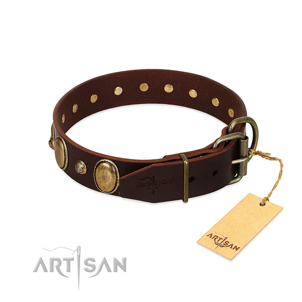 Strong buckle on leather collar for daily walking your dog