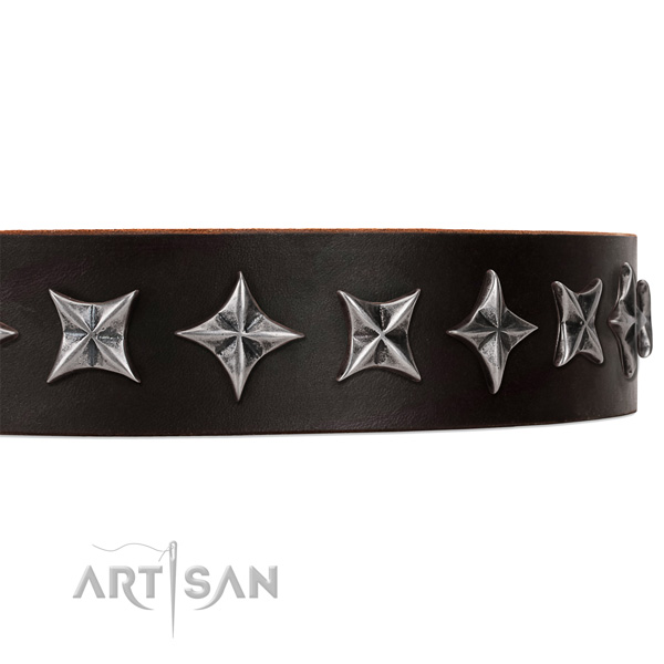 Everyday use adorned dog collar of strong leather