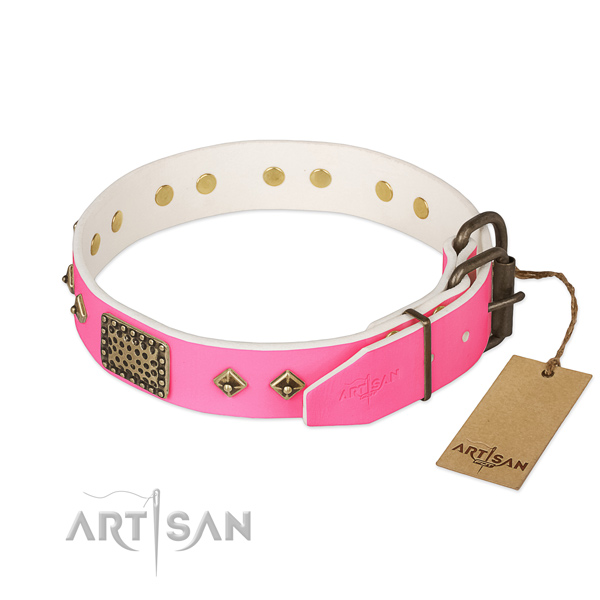 Rust-proof adornments on everyday use dog collar