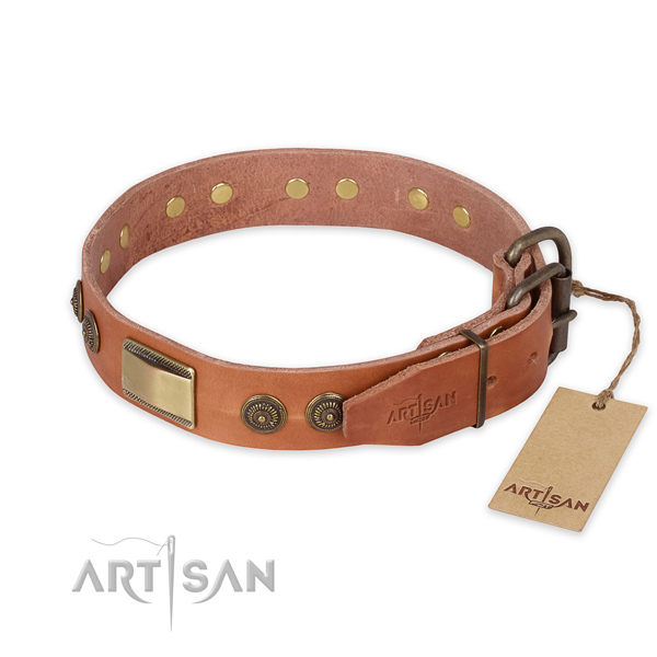 Rust resistant buckle on full grain genuine leather collar for basic training your dog
