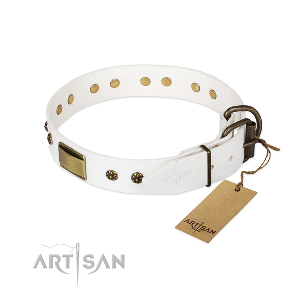 Full grain natural leather dog collar with durable traditional buckle and adornments