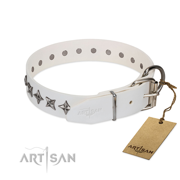 Strong full grain genuine leather dog collar with top notch adornments