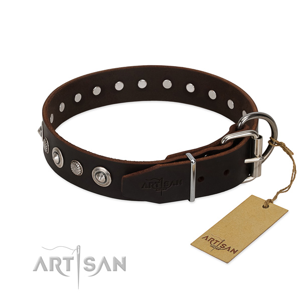 Strong full grain natural leather dog collar with stunning embellishments