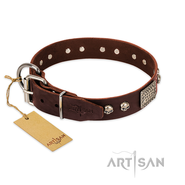 Durable D-ring on everyday use dog collar