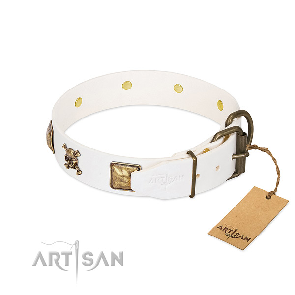 Stunning full grain natural leather dog collar with rust-proof embellishments