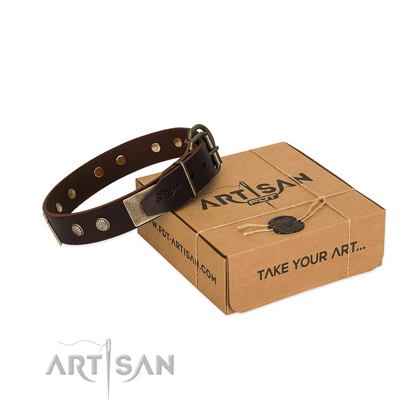 Rust-proof buckle on dog collar for walking