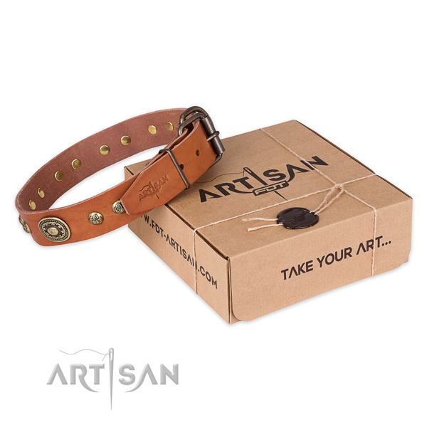 Rust resistant D-ring on leather dog collar for everyday walking