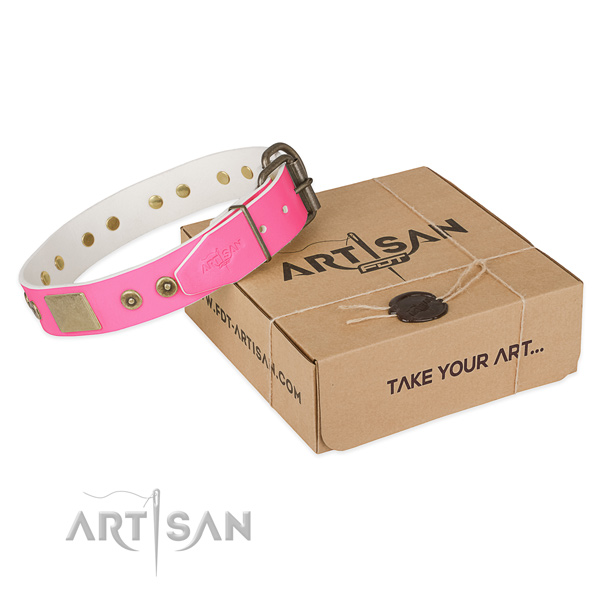 Reliable traditional buckle on dog collar for comfy wearing