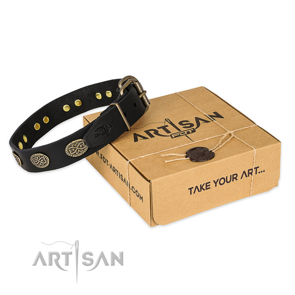 Reliable traditional buckle on leather collar for your handsome doggie