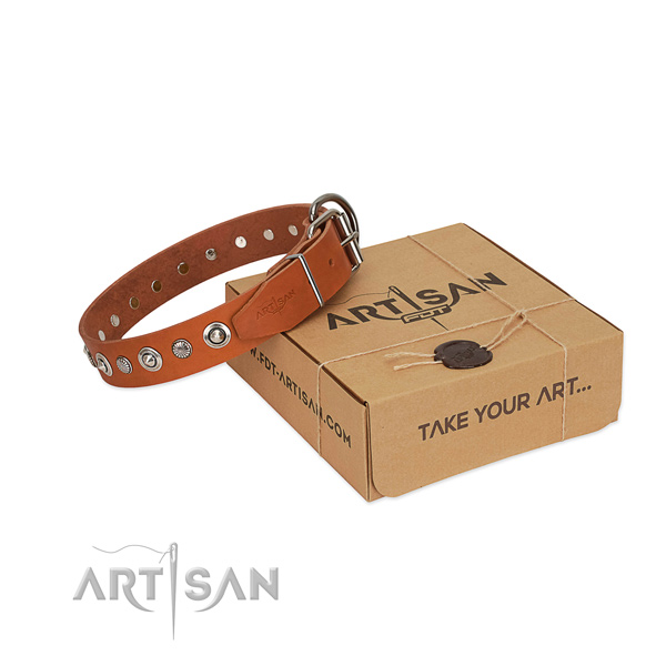 Reliable full grain leather dog collar with extraordinary decorations