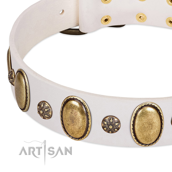 Handy use top rate leather dog collar with embellishments