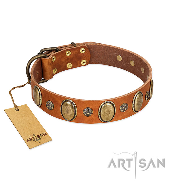 Daily use high quality full grain natural leather dog collar with decorations