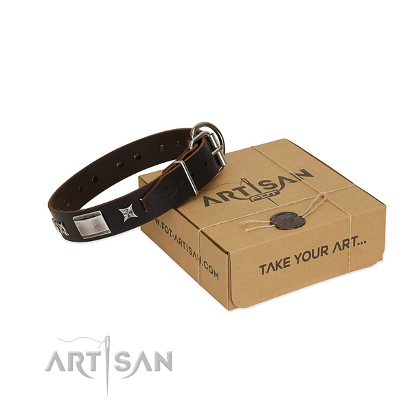 Remarkable collar of full grain natural leather for your lovely canine
